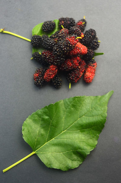Mulberry Fruit Red Food Backgrounds Close-up Freshness Food And Drink Healthy Eating Green Leaf