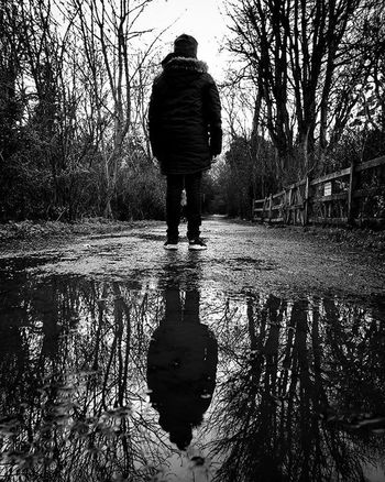 Standing In The Dark... Rear View Tree Water One Person Real People Plant Full Length
