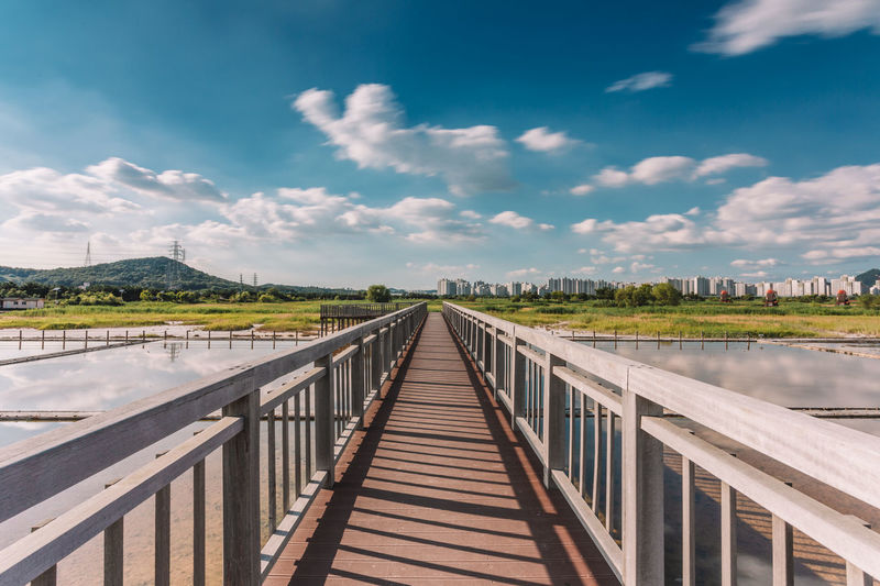 Wood deck in wetland park on a sunny day