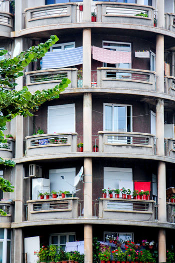 building in korcha, albania Albania Korçë, Albania Tirana Apartment Architecture Balcony Building Building Exterior Built Structure City City Life Day House In A Row Korch Korcha Low Angle View Nature Outdoors Plant Potted Plant Residential Building Residential District Window