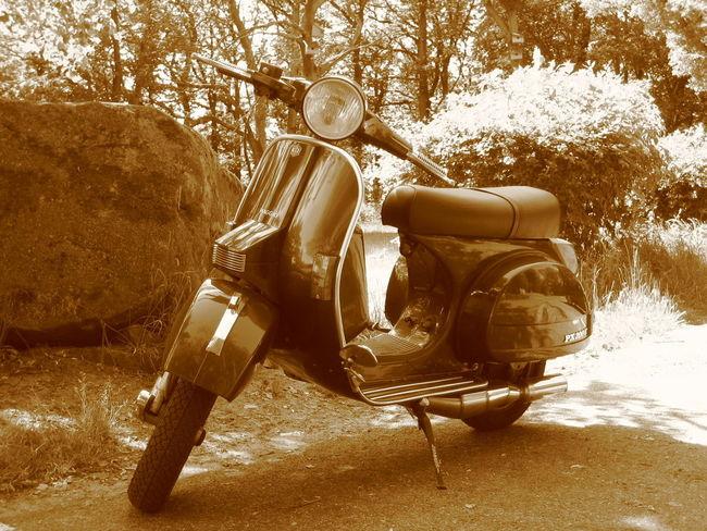 Close-up Motorcycles No People Outdoors Sepia Still Life Vehicle Vespa Check This Out EyeEm Foto