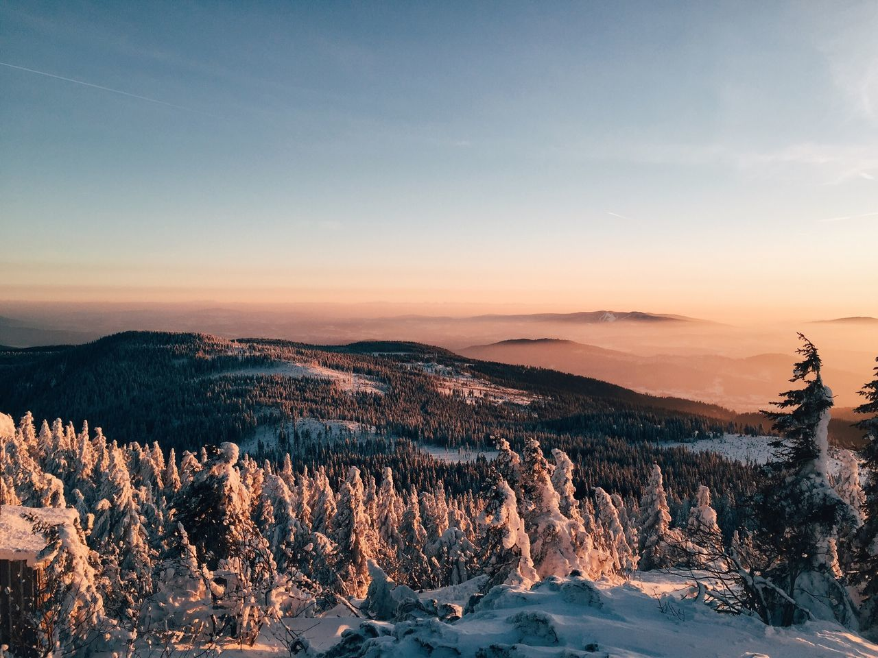 Snow covered trees on mountain against sky during sunset