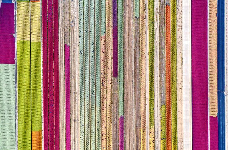 Full frame shot of multi colored book