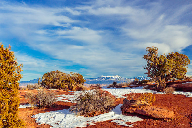 Scenic View Of Landscape At Dead Horse Point State Park In Winter
