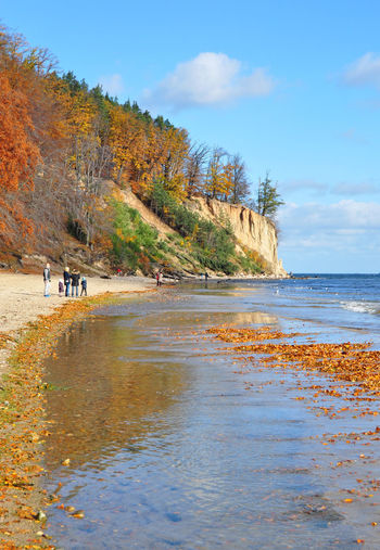 Autumn Autumn Colors Autumn Leaves Baltic Baltic Countries Baltic Sea Beauty In Nature Blue Blue Sky Cliff Contrast Fall Landscape Nature Poland Sea Sea And Sky Seascape Sunny Tranquil Tranquil Scene Tranquility Travel Travel Photography Traveling