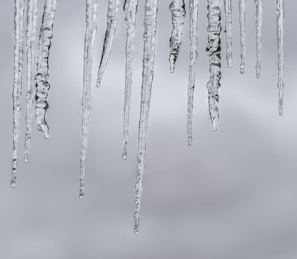 Close-up of icicles against sky