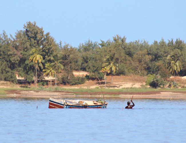 People River Water Nature Sky Landscape Tree Day Outdoors Transportation Africa Lac Rose Palm Tree Clear Sky Viaje Senegal Scenics Escapada Nautical Vessel Only Men Raconets Waterfront Salt Beauty In Nature