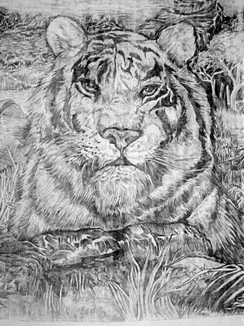 EyeEm Animal Lover Just Hanging Out Just Chillin' Relaxing EyeEm Pencil Drawing Art, Drawing, Creativity This drawing was done by Wayland Theo Lander.