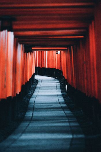 Japan Kyoto Shrine Architecture The Way Forward Direction Built Structure Indoors  Red No People Diminishing Perspective Tunnel Building Wall - Building Feature Empty Arcade Sunlight Footpath Shadow Day Transportation City Underpass The Traveler - 2019 EyeEm Awards The Great Outdoors - 2019 EyeEm Awards