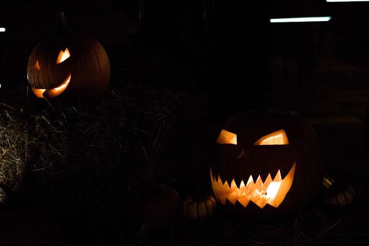 Halloween Halloween Horrors Halloween_Collection Horror Horror Photography Monsters Pumpkin Spooky Spooky Atmosphere Warsaw Pumpkins Night Photography Light Bulb Light Light Bulbs Light And Shadow Street Photography Halloween EyeEm