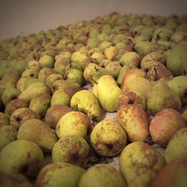 груши фрукты