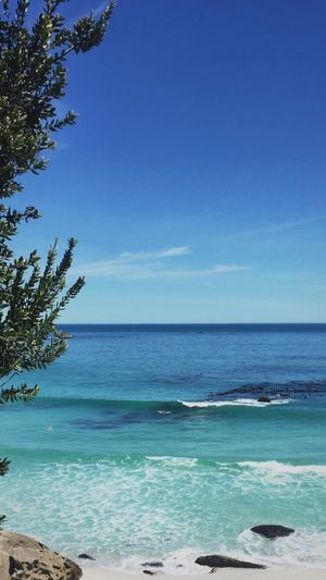 Clifton Sea Blue Beauty In Nature Scenics Tranquility Water Nature Tranquil Scene Horizon Over Water No People Beach Tree Day Outdoors Sky Clear Sky EyeEmNewHere
