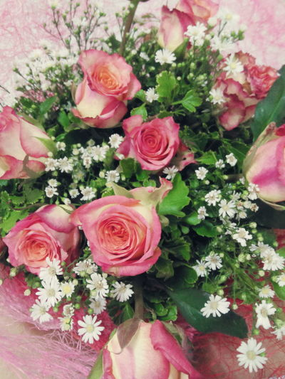 pikk tipped roses Bouquet Bouquet Of Flowers Bouquet Of Roses Whiterose Pinktipped Pink Tipped White Roses