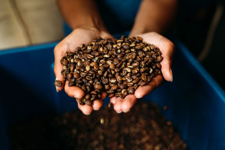 Cropped Hands Holding Roasted Coffee Beans