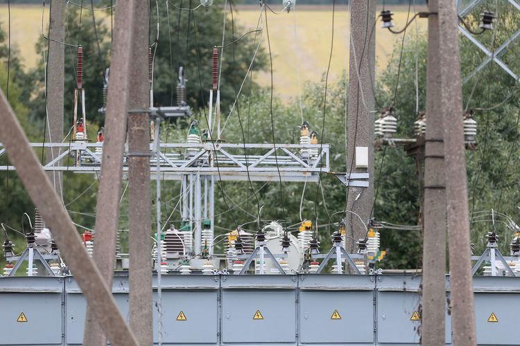 Birds perching on metal fence
