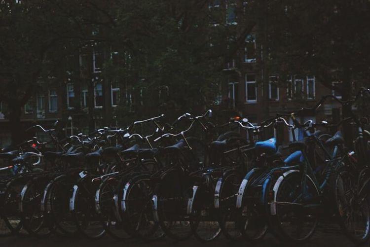 Love Amsterdam Olanda Summer Bicycle Holland Missing Vintage Architecture Analogic
