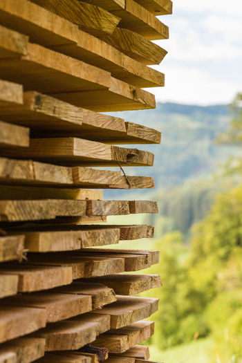 stack of wooden planks from the side Close-up Day Focus On Foreground Large Group Of Objects Nature No People Outdoors See Through The Camera Stack Tree Wooden Planks