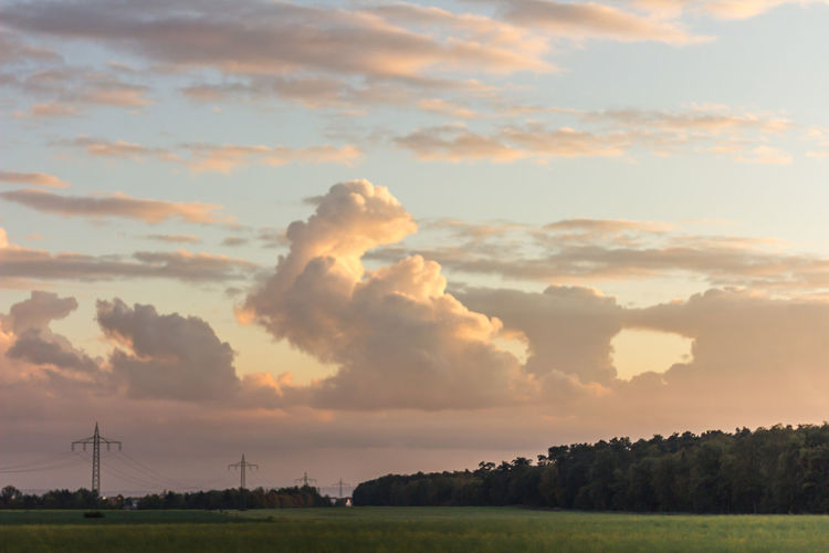Beauty In Nature Cloud - Sky Day Field Grass Landscape Nature No People Outdoors Scenics Sky Sunset Tranquil Scene Tranquility Tree Wind Power