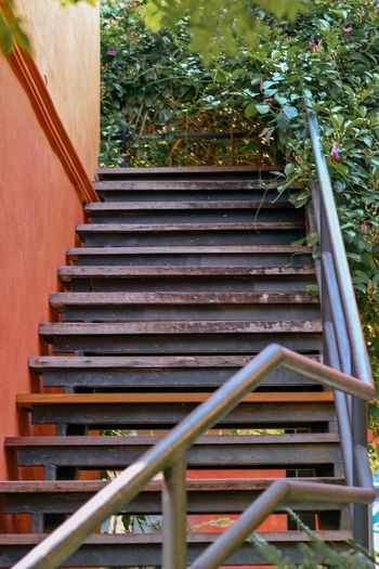 Wooden stairs,
