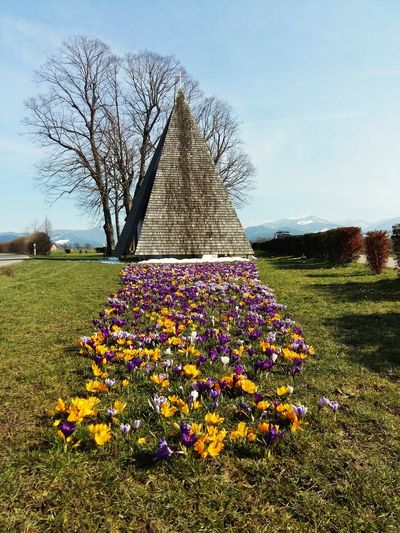 Flowers Pyramid