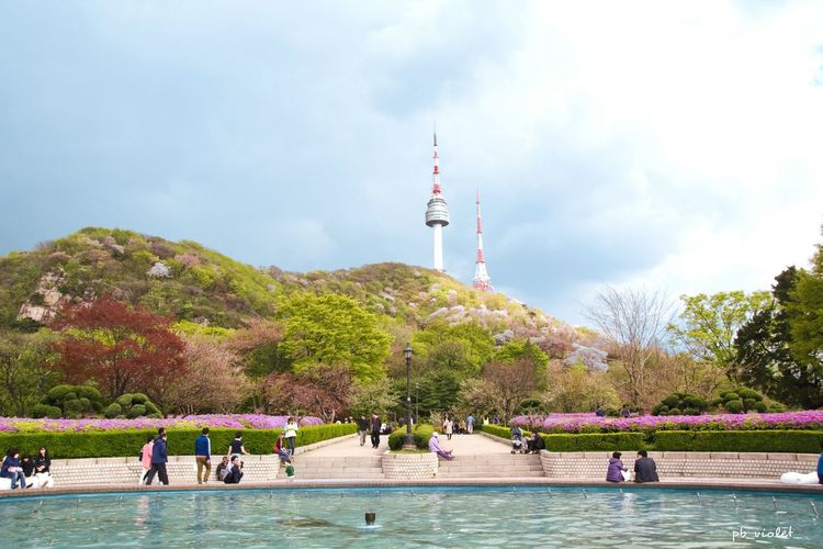 The Great Outdoors With AdobeUrban Spring Fever Spring Seoul Seoul Tower Namsan Tower  Namsan Mountain City Park Sky Cloud Colorful April May Cityscapes Senary Showcase April South Korea 서울타워 남산타워 봄 남산
