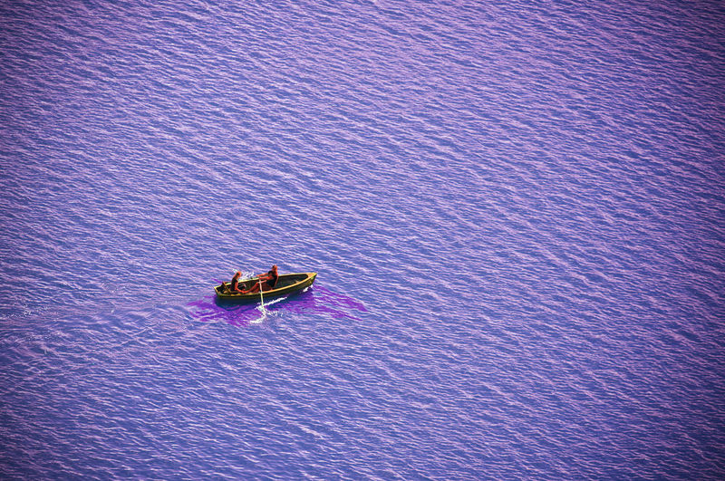 High angle view of purple floating on sea