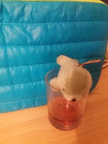 Cuddly toy seal drinks alcoholic drink Alcohol Alcoholic Drink Blue Close-up Cuddly Toy Cuddly Toys Drink Focus On Foreground Freshness Indulgence No People Refreshment Seal Seals Still Life Wood - Material