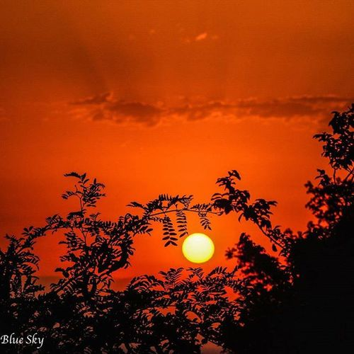 Lahijan Gilan Iran Sheytan Kooh Spring NikonD7100 NikorVR 18~300 Sun Sunset