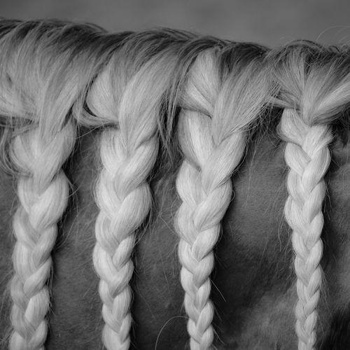 Full frame shot of rope tied up