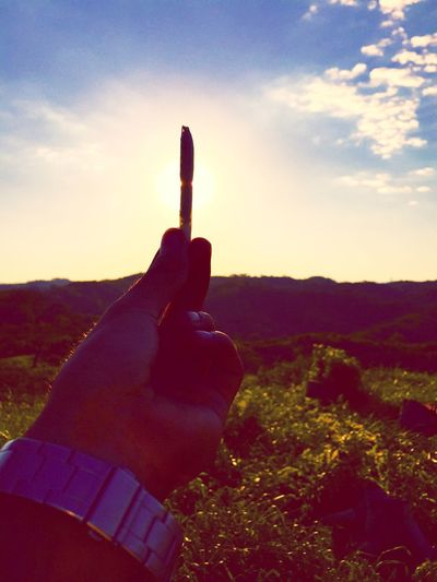 Alturas Weed Life Sunshine Santacruz #Bolivia Highlifestyle