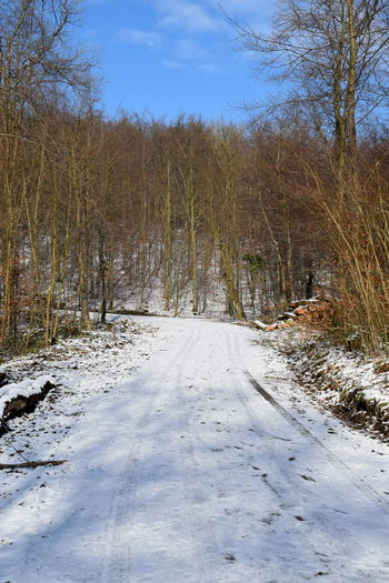 ein bisschen Schnee auch im Weserbergland Bare Tree Beauty In Nature Cold Temperature Day Forest Landscape Nature No People Outdoors Road Scenics Sky Snow The Way Forward Tranquil Scene Tranquility Tree Winter