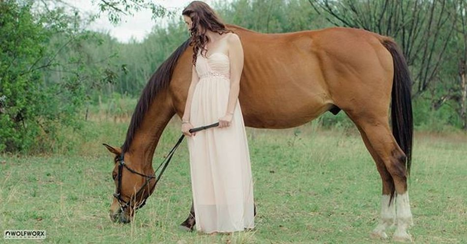 @Instag_app Horses Horse Horsesofinstagram Pentax Wolfworx Horses_of_instagram Horsestagram Instahorses Goddessonhorseback Mane Instagood Grass Field Farm Nature Ilovemyhorse Beautiful Pretty Dress Rider
