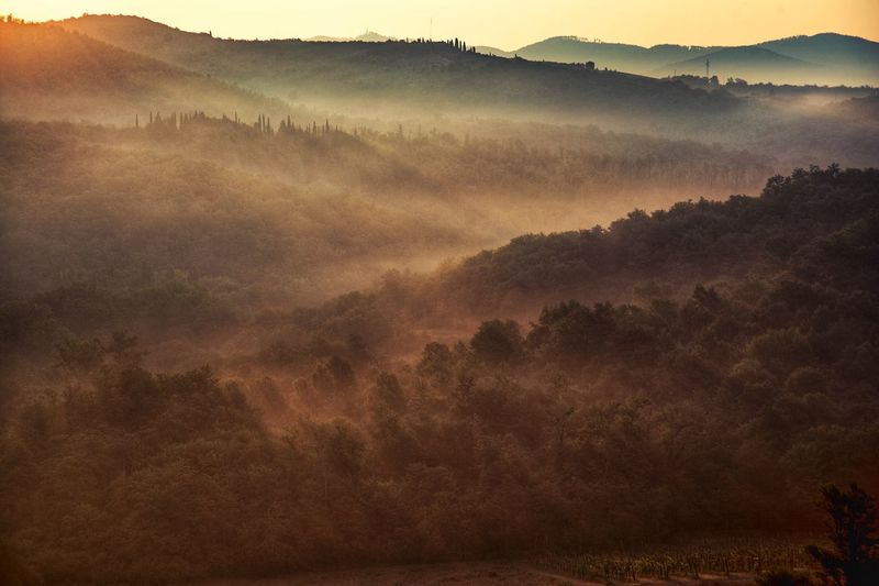 morning Zen Tuscany Scenics - Nature Tranquility Beauty In Nature Land Landscape Environment Tranquil Scene Nature Mountain Outdoors Non-urban Scene Rural Scene Idyllic