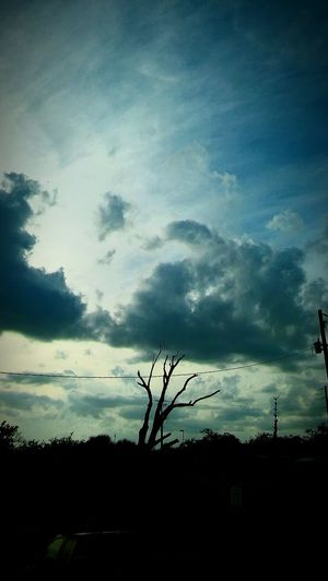 Tree Sky Cloud - Sky Dramatic Sky Sunset No People Nature Beauty In Nature Day Scenics Exciting Landscape Tranquil Scene Tranquility Eyeemnaturelover Beautyinnature  I 💓Tree's NakedTree Landscape