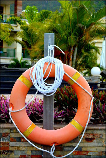 By The Pool Close-up Emergency Equipment Life Saving Life Saving Equipment Life Saving Ring Orange Objects Rescue Saving Wheel