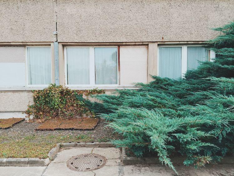 1980 Arhitecture Berlin Berliner Ansichten DDR Ostberlin