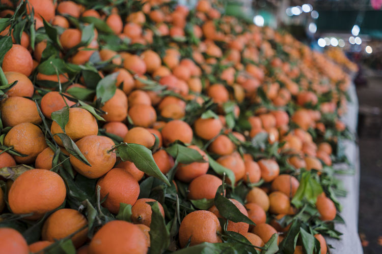 Oranges at a market in Morocco Morocco Agadir Africa Authentic Moments Travel Food Food And Drink Freshness Healthy Eating Abundance Market Large Group Of Objects Wellbeing Retail  Fruit Market Stall Orange Color Selective Focus Business No People Day Choice Still Life Retail Display Orange