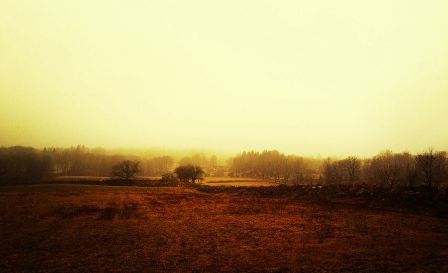 Now we meet spring and leave winter behind us EyeEm Nature Lover AMPt_community Landscape_Collection Nature