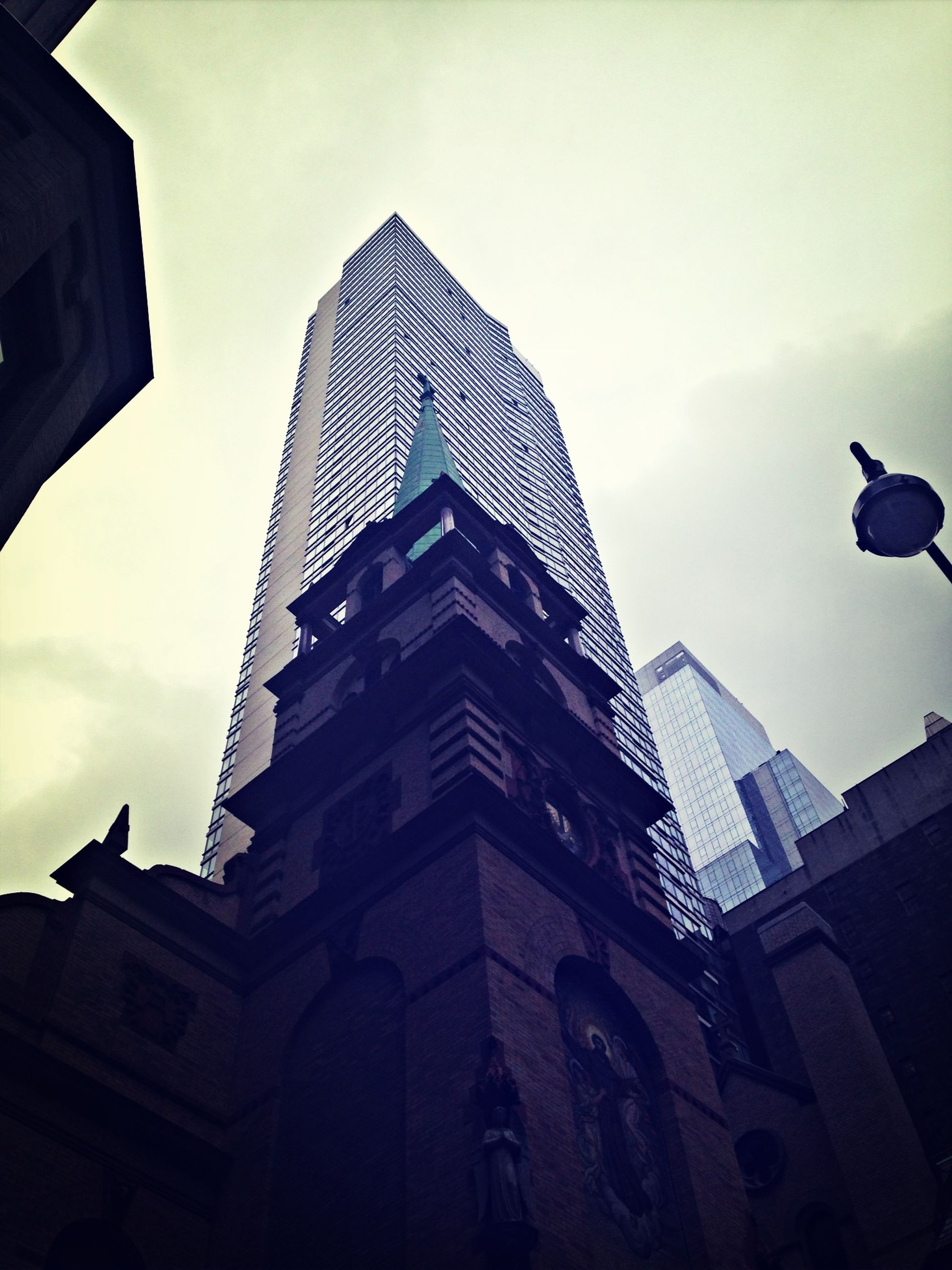 low angle view, architecture, building exterior, built structure, sky, city, bird, tower, tall - high, building, office building, modern, skyscraper, day, outdoors, cloud - sky, no people, animal themes, glass - material, window