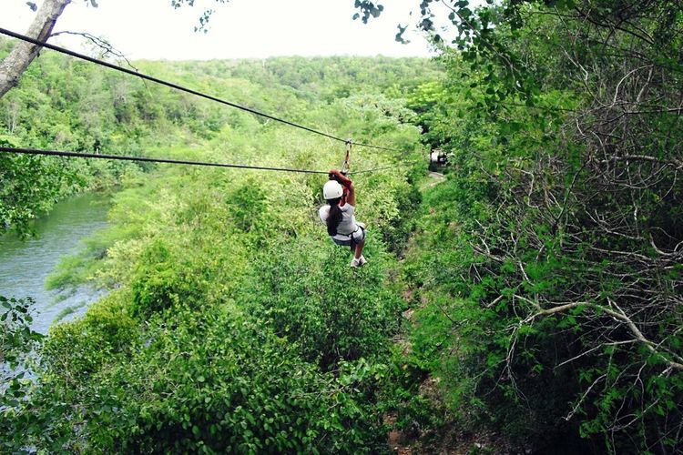 Life without taking risk is not worth living. Whatever It Takes Capture Freedom Thats Me! EyeEm Nature Lover Nature Greenery The Week On EyeEm Capture The Moment Islandlife Zipline
