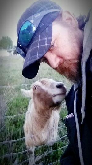 That's Me and my buddy Mr Goat just walkin round Taking Photos Enjoying Life Eye4photography  Animal Photography Animal_collection Animal Love Animalsofinstagram Goat Selfie hope you enjoy the shot, by Adam O