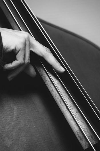 Cropped Image Of Musician Playing Stringed Instrument