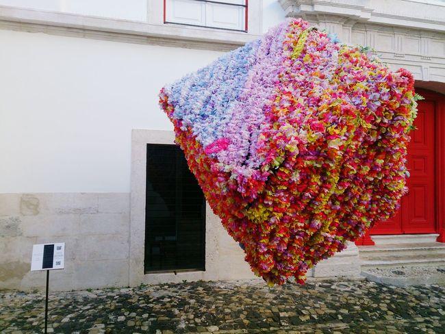Art Installation Lisboa Floating Flower Cube EyeEmNewHere