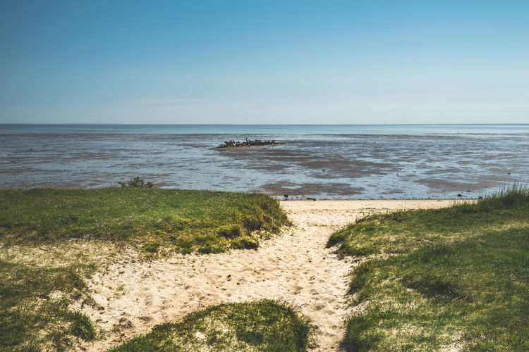 Beach Beauty In Nature Clear Sky Day Grass Horizon Horizon Over Water Land Nature No People Outdoors Plant Sand Scenics - Nature Sea Shipwreck Sky Tranquil Scene Tranquility Water