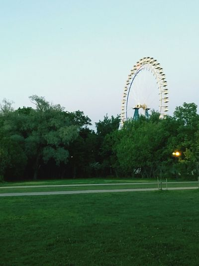 колесо_обозрения колесообозрения трава Plant Tree Sky Ferris Wheel Amusement Park Amusement Park Ride Nature Architecture No People Clear Sky Arts Culture And Entertainment Copy Space Built Structure Grass Day Green Color Outdoors Travel Destinations Growth Shape