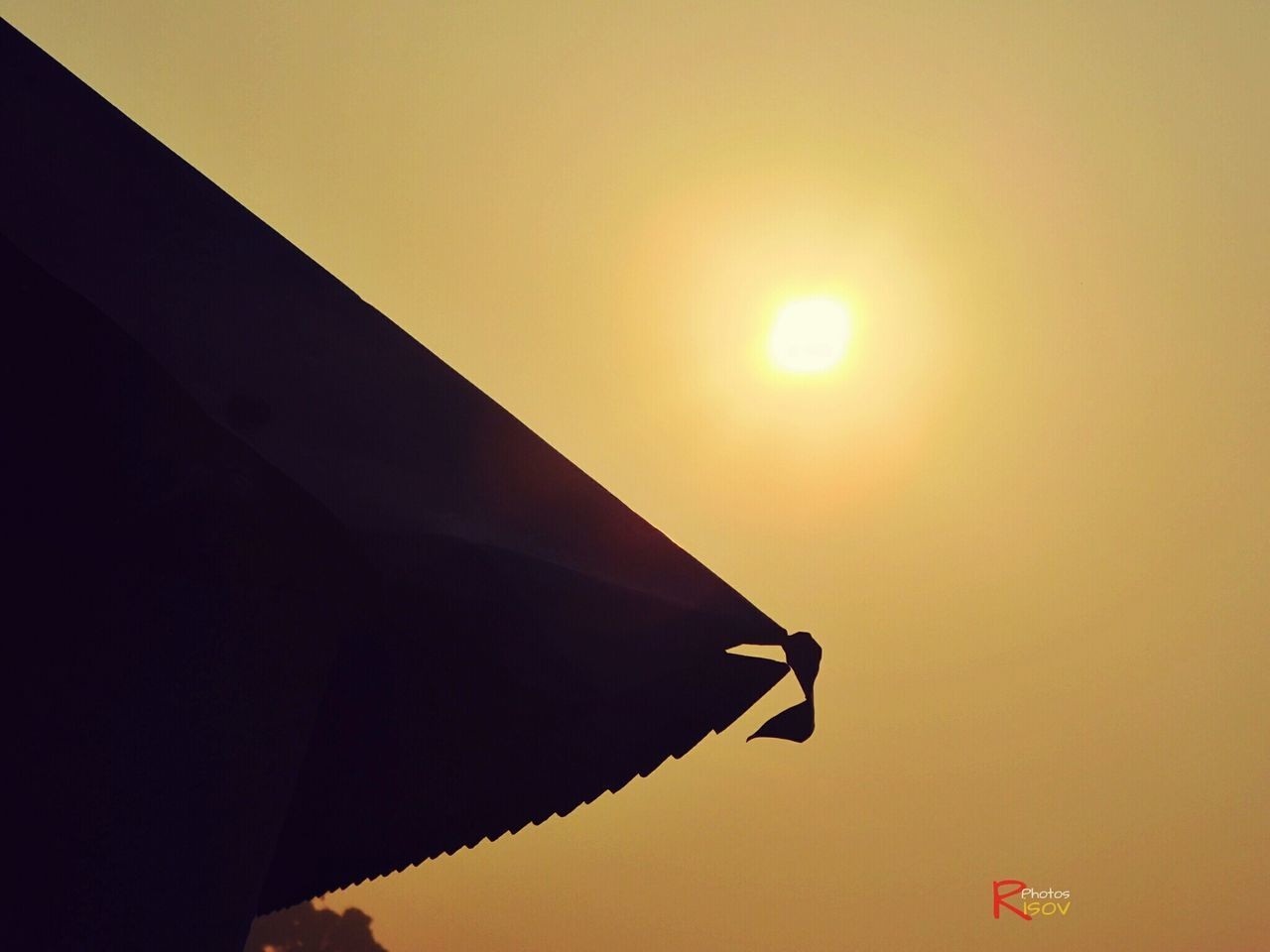 sunset, sun, no people, low angle view, outdoors, nature, silhouette, sunlight, sky, beauty in nature, close-up, day