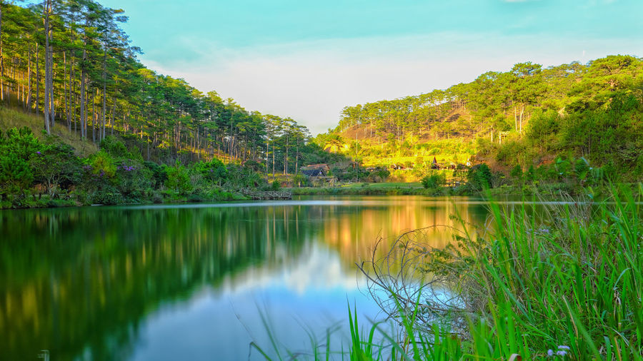 Reflection Lake Mountain Water Scenics Tree Beauty In Nature Nature Outdoors Mountain Range Landscape No People Sky Day Cloud - Sky Tree Nature Dalat - Vietnam Lost In The Landscape