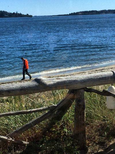 Walking The Beach Beach Chilly Day Taking Photos Maine Carol Sharkey Photography
