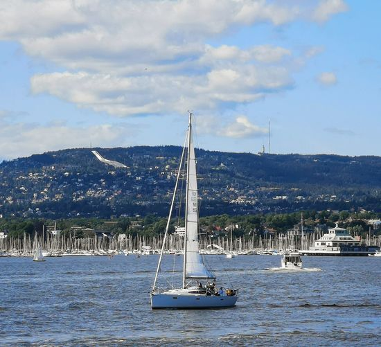 Norway Oslofjord Yachting Sailing Ship Water Nautical Vessel Mast Yacht Sailboat Sea Sailing Regatta Harbor Marina Sailing Boat Boat