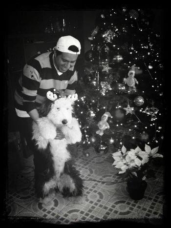 2012 memoriiiiieeeeesss!!!! Holydays 2014 Alushe ¡Feliz Navidad!